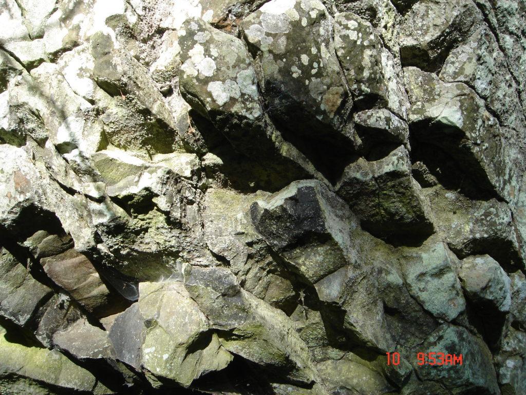 geologins-dag-lonnebjer-1609-005